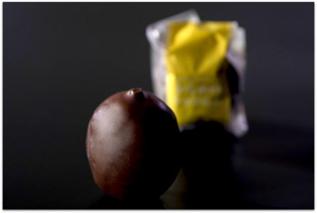 岩手県 いわての銘菓 さいとう製菓 かもめの玉子 かもめのショコらん