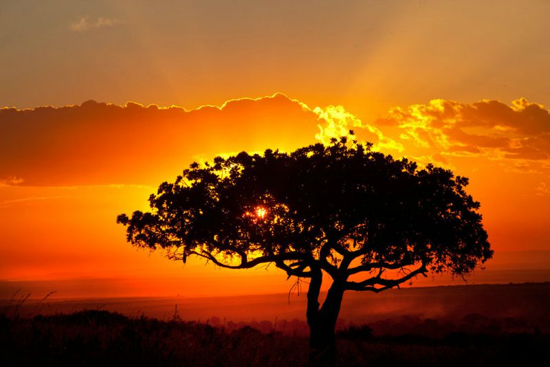 African-landscape-sunset-by-catman-suha1.jpg