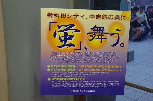 0107新梅田シティー蛍