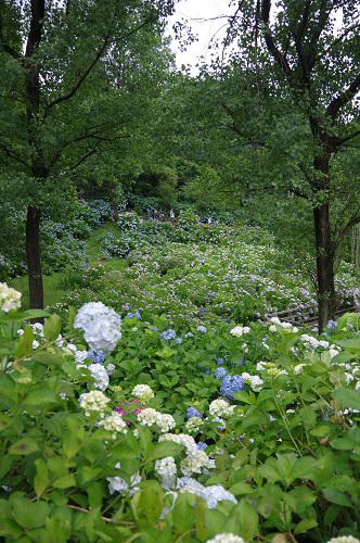 0059舞鶴自然文化園