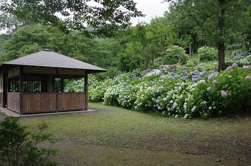 0063舞鶴自然文化園