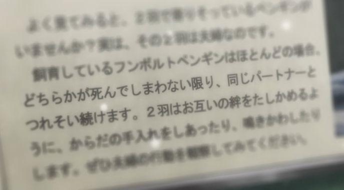 sotohan_hamachi_zoku13_img035.jpg