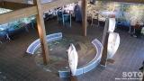 ウトナイ湖野生鳥獣保護センター(内部)