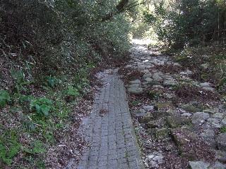 タイルと石の道_H22.05.01撮影