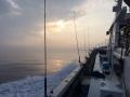ヒラメ釣り2015・1