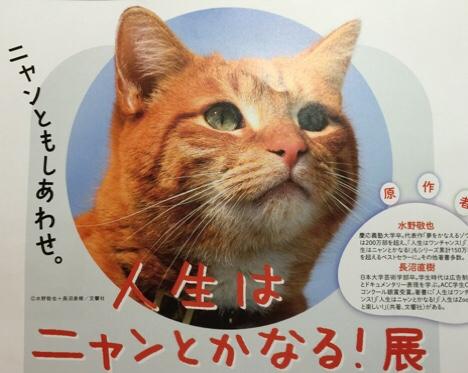 fc2blog_20150705104119167.jpg