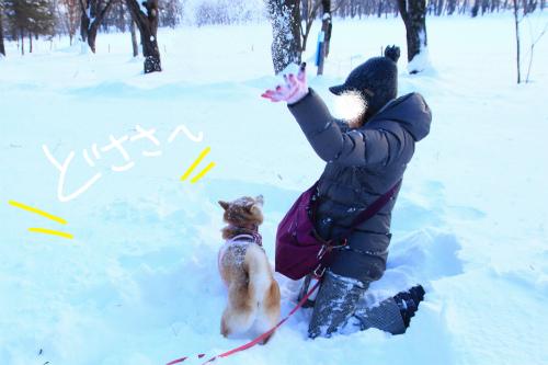 スーパー雪かけごっこ