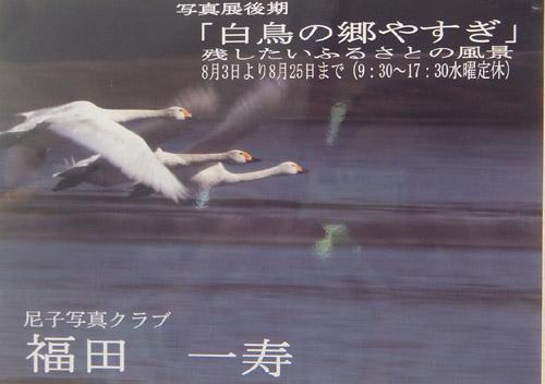 DSCF福田白鳥