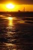 金色の海岸