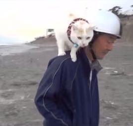 肩乗り猫 05