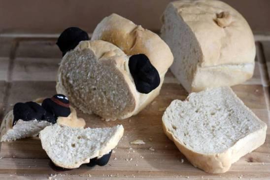 Pug-Loaf01.jpg