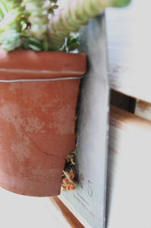 割れ鉢 リメイク 寄せ植え