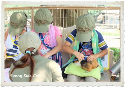 zoosummerschool-2.jpg