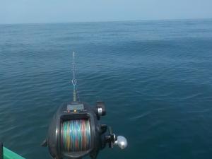 DSCN0802 - ベタ凪にマゴチを狙う