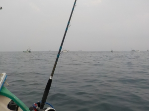 DSCN0810 職漁船いっぱい