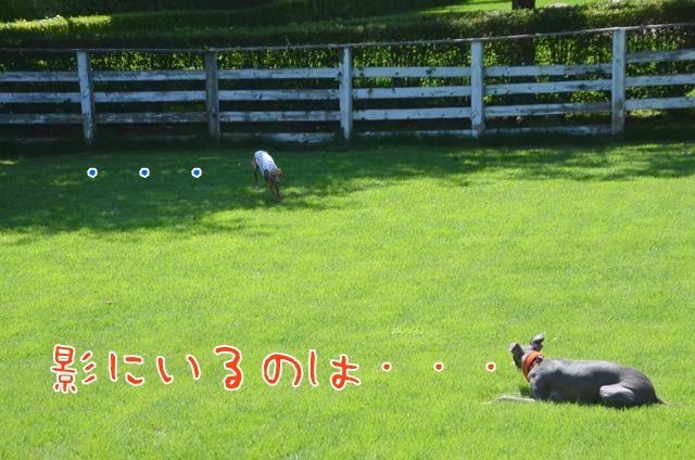 DSC_6773.jpg