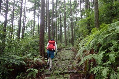 20150704熊野古道02_