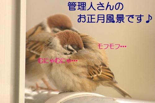 040_2015010418263216f.jpg