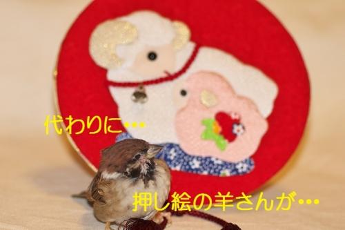 070_20150101203200721.jpg