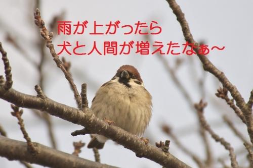 090_20150106180628fad.jpg