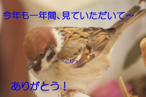 150_20141230205753801.jpg