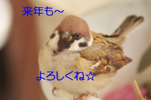 160_2014123020575898b.jpg