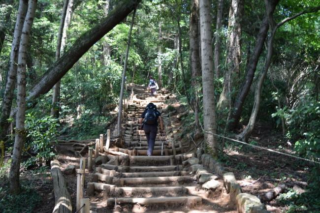 高尾山 6号路 階段