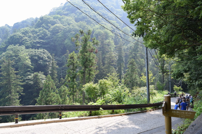高尾山 1号路 景色3