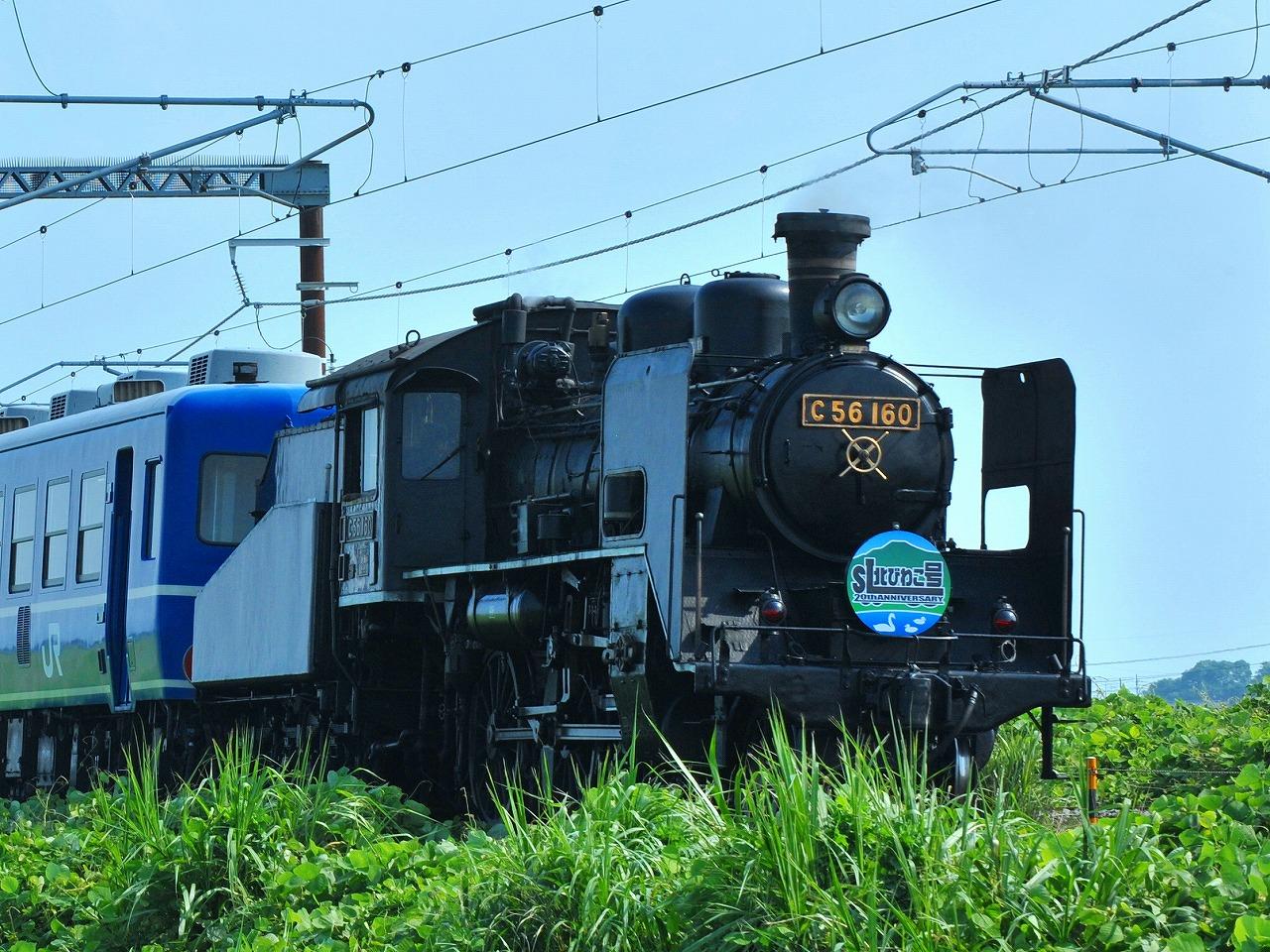 DSC_6313.jpg
