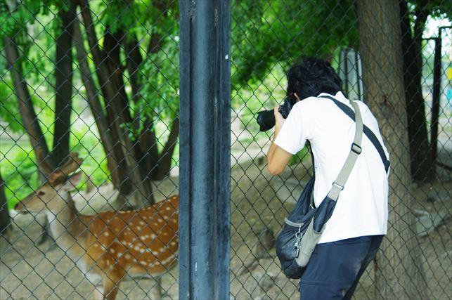 アルマトイの動物園 (74)_R