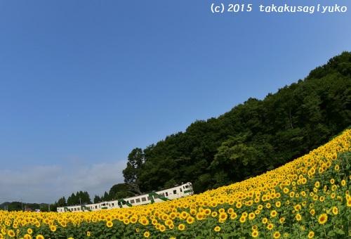 DSC_5404_01.jpg