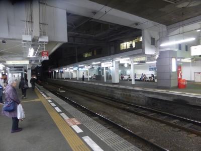 P1040951_R.jpg