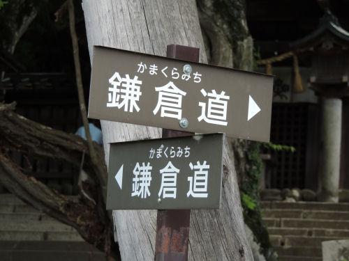 150718suwa37.jpg