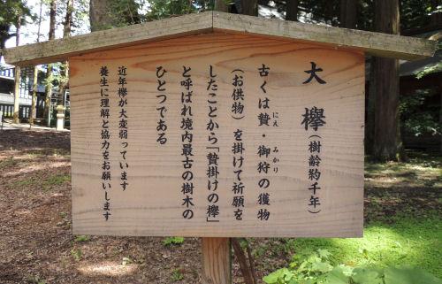 150721suwa11.jpg