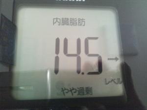 150718_内臓脂肪 (300x225)