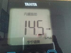 150729_体内脂肪 (300x225)