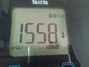150729_基礎代謝 (300x225)