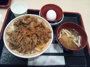 すき家 牛丼大盛 (300x225)