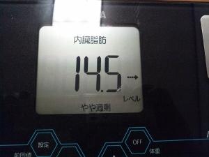 150809_内臓脂肪 (300x225)