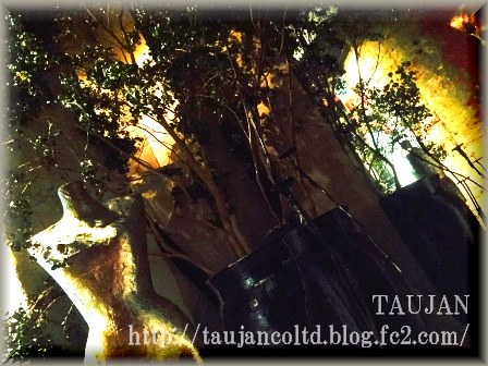2015 TAUJAN ギャラリー 入口