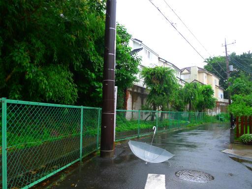 20150619・雨の日のささやき06