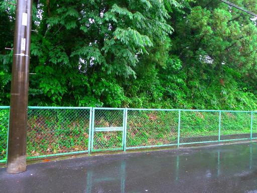 20150619・雨の日のささやき04
