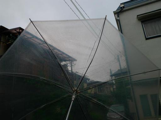 20150619・雨の日のささやき01