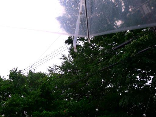 20150619・雨の日のささやき03
