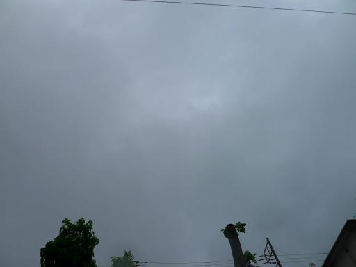 20150619・雨の日のささやき11