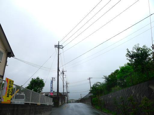 20150619・雨の日のささやき14