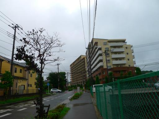 20150619・雨の日のささやき21