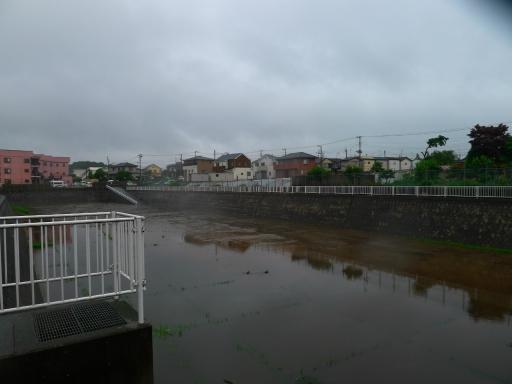 20150619・雨の日のささやき拡大