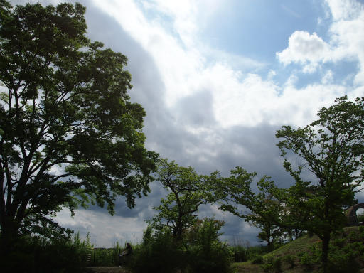20150628・東大和・曇り空05