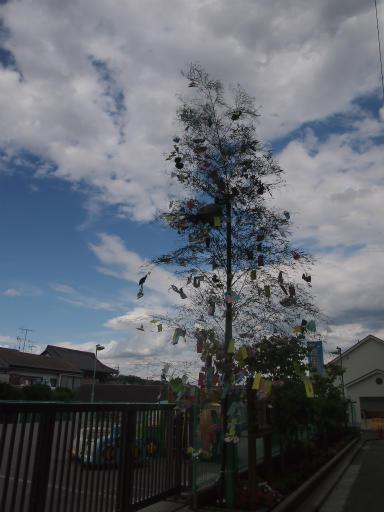 20150628・東大和・曇り空11